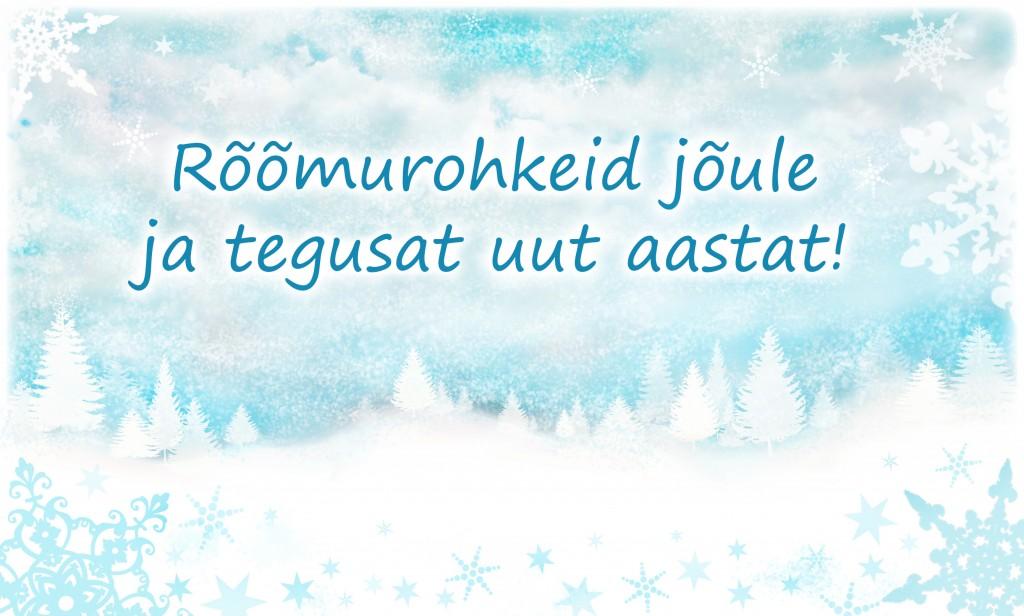 jõulukaart2013